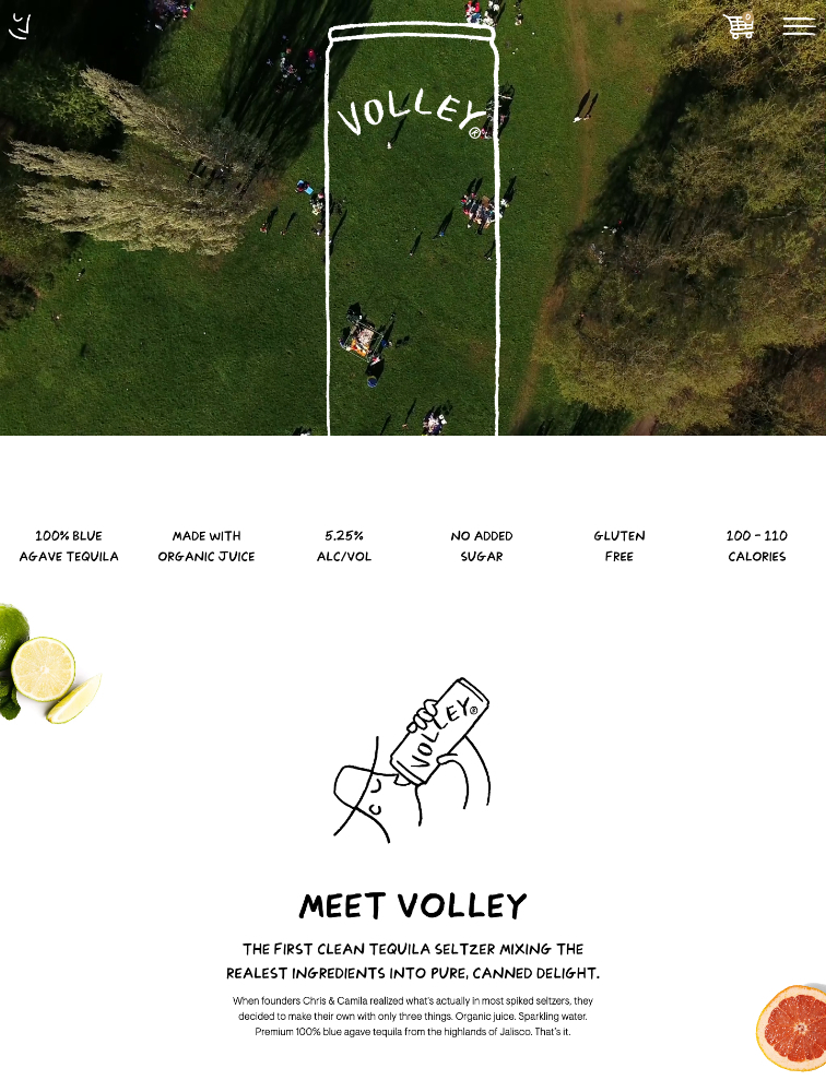 Volley Landing Page Example