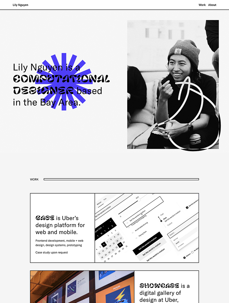Lily Nguyen Landing Page Example