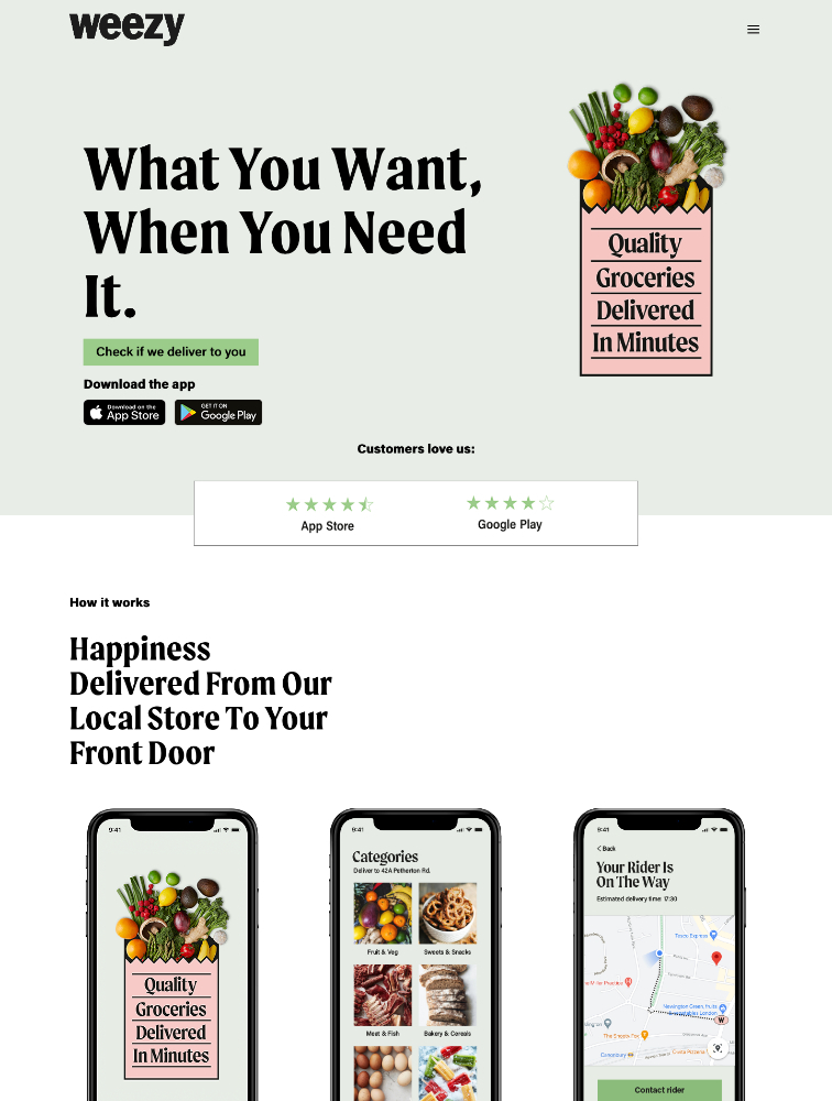 Weezy Landing Page Example